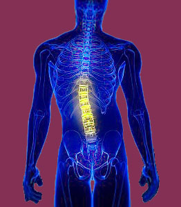 Scoliosis Relief